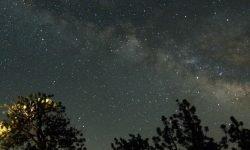 Oroscopo: 5 giugno segno zodiacale