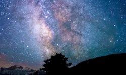 Oroscopo: 11 giugno segno zodiacale