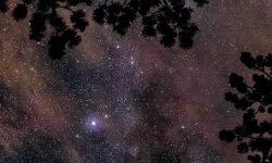 Oroscopo: 16 giugno segno zodiacale