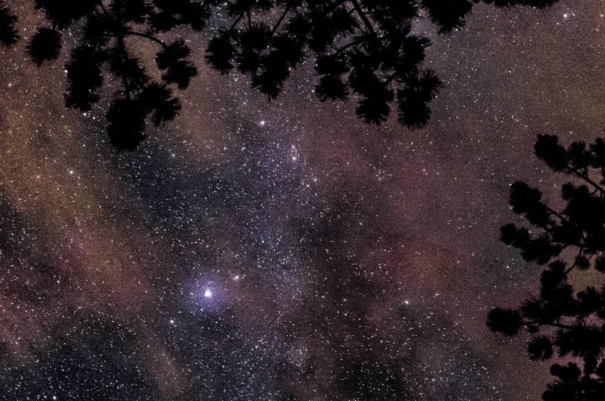 16 giugno segno zodiacale