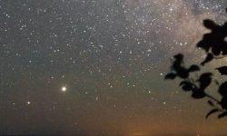 Oroscopo: 23 giugno segno zodiacale