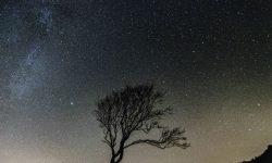 Oroscopo: 26 giugno segno zodiacale
