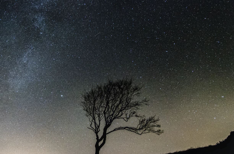 26 giugno segno zodiacale