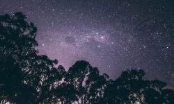 Oroscopo: 6 luglio segno zodiacale