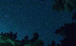 Oroscopo: 10 luglio segno zodiacale