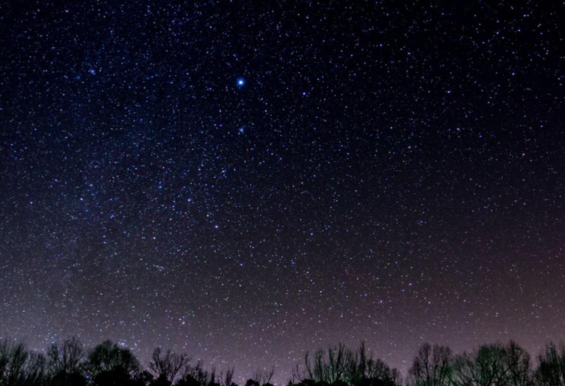 11 luglio segno zodiacale