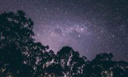 Oroscopo: 14 luglio segno zodiacale