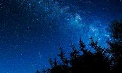 Oroscopo: 17 luglio segno zodiacale