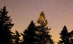 Oroscopo: 25 luglio segno zodiacale