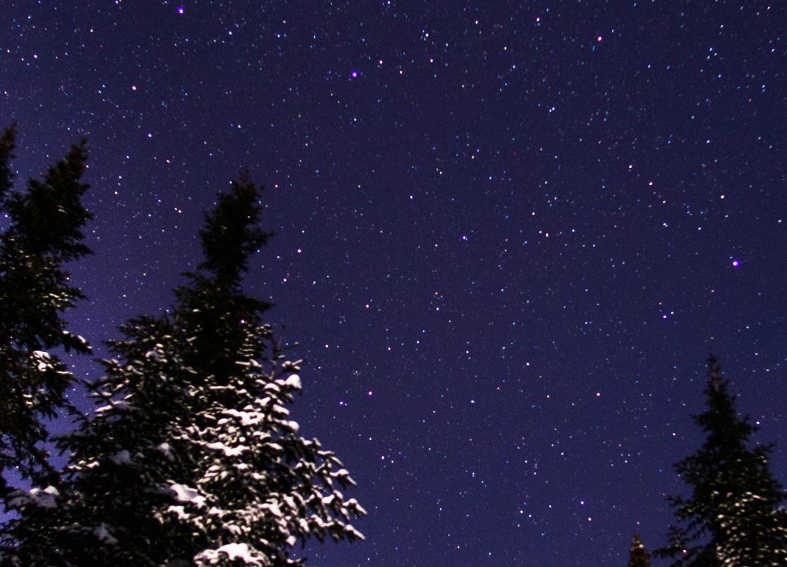 4 agosto segno zodiacale