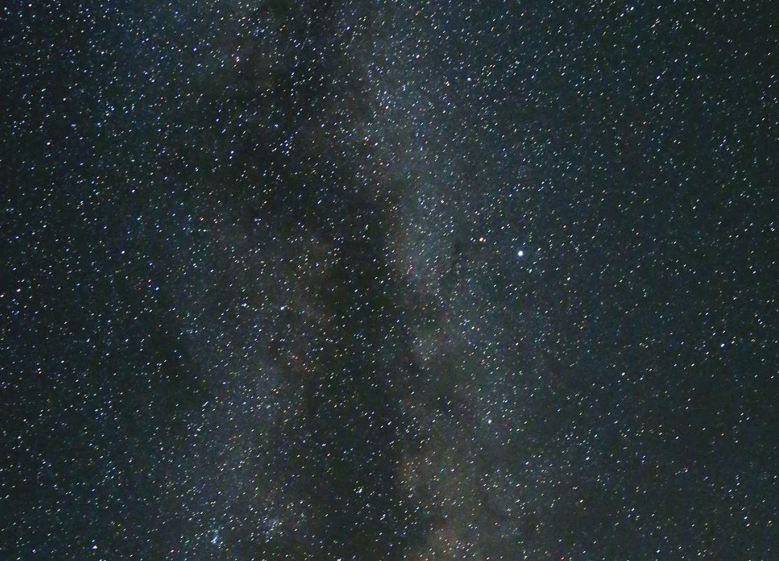 8 agosto segno zodiacale