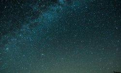Oroscopo: 13 agosto segno zodiacale