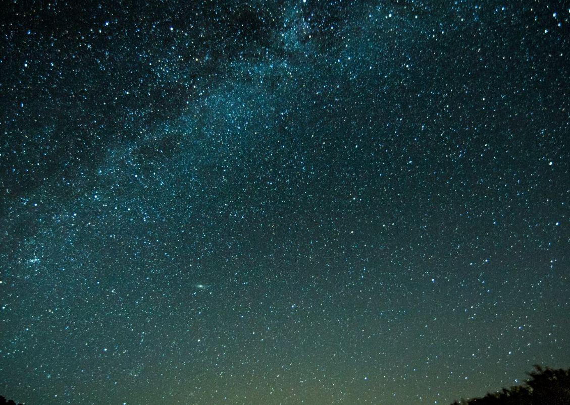 13 agosto segno zodiacale