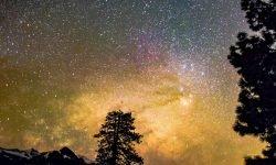 Oroscopo: 15 agosto segno zodiacale
