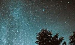 Oroscopo: 17 agosto segno zodiacale