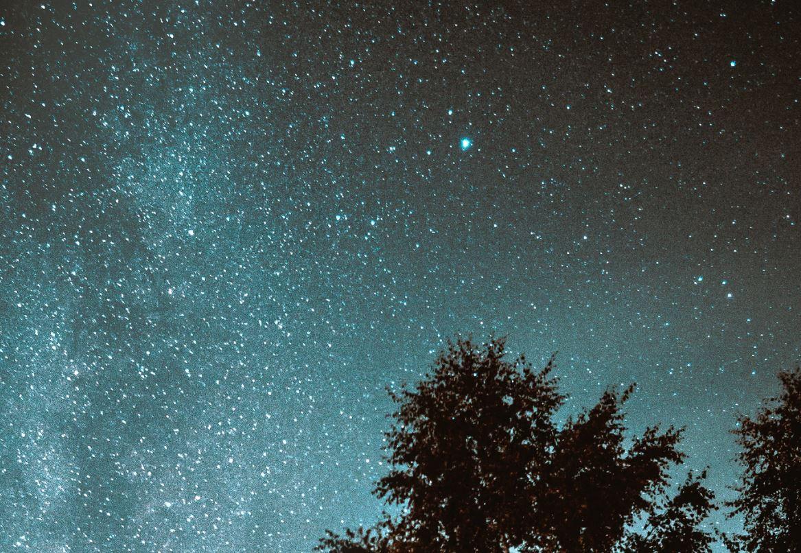 17 agosto segno zodiacale