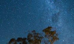 Oroscopo: 1 ottobre segno zodiacale