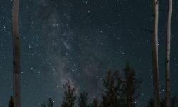 Oroscopo: 8 ottobre segno zodiacale