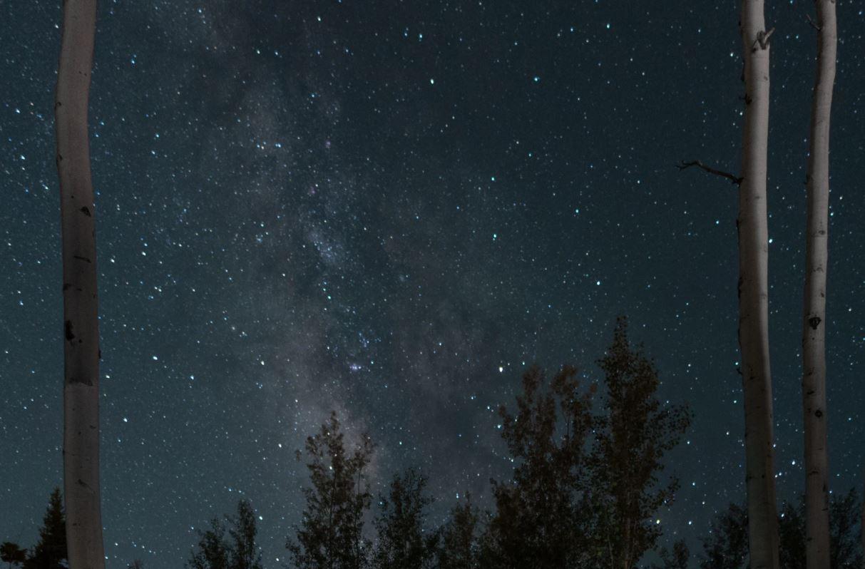 8 ottobre segno zodiacale
