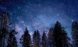 Oroscopo: 13 ottobre segno zodiacale