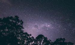 Oroscopo: 20 ottobre segno zodiacale