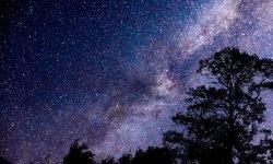 Oroscopo: 1 novembre segno zodiacale