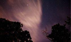 Oroscopo: 2 novembre segno zodiacale