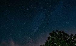 Oroscopo: 10 novembre segno zodiacale