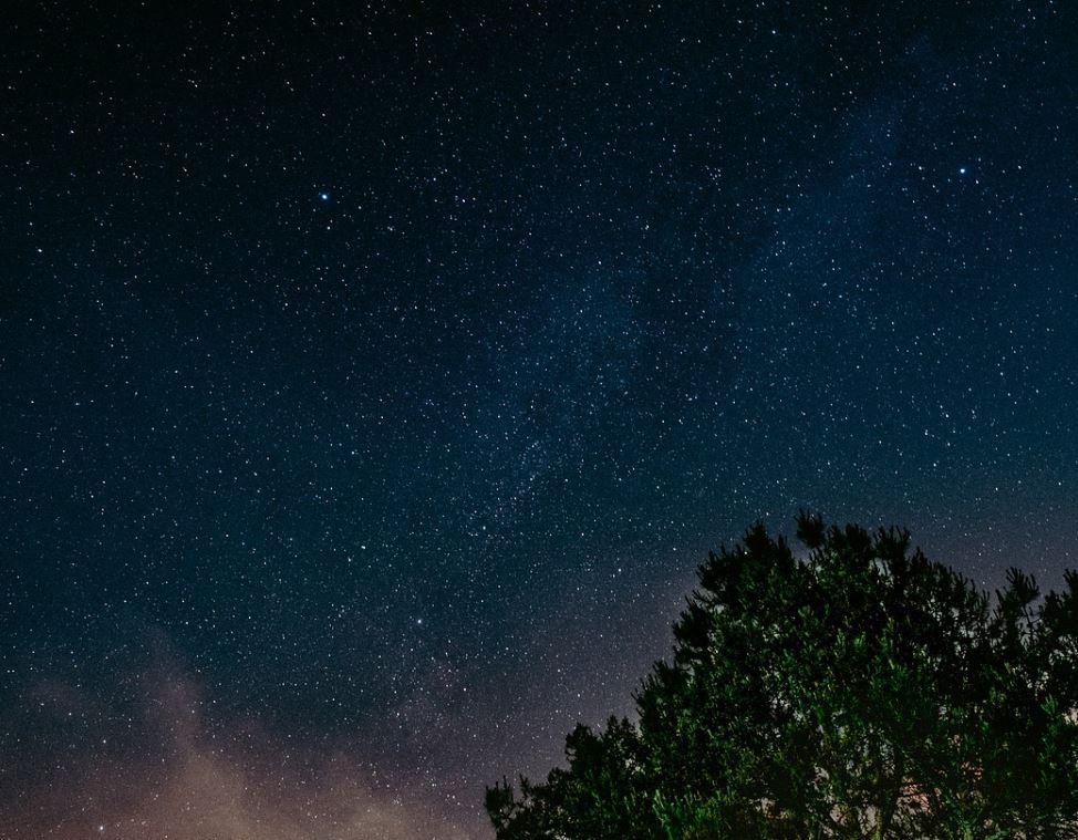 10 novembre segno zodiacale