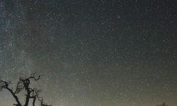 Oroscopo: 13 novembre segno zodiacale