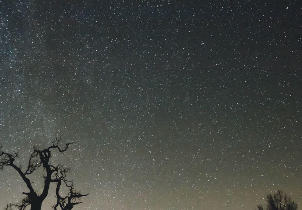 13 novembre segno zodiacale