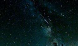 Oroscopo: 14 novembre segno zodiacale