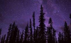 Oroscopo: 16 novembre segno zodiacale