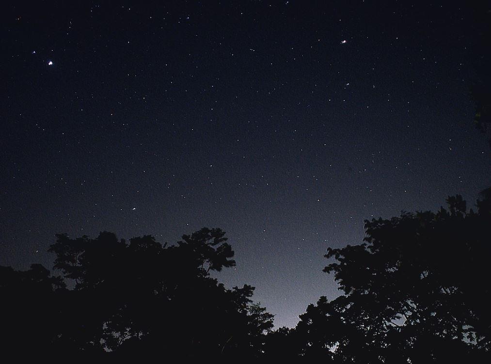 21 novembre segno zodiacale