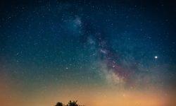 Oroscopo: 24 novembre segno zodiacale