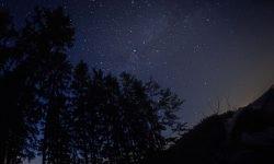 Oroscopo: 25 novembre segno zodiacale