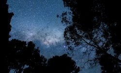 Oroscopo: 30 novembre segno zodiacale