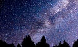 Oroscopo: 1 dicembre segno zodiacale