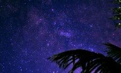 Oroscopo: 4 dicembre segno zodiacale
