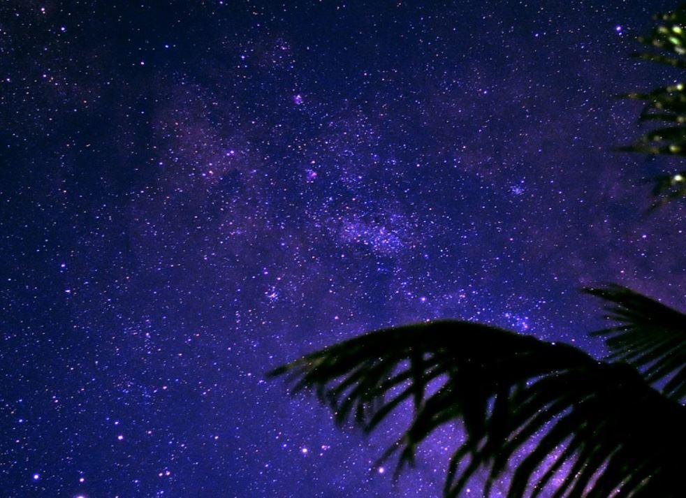 4 dicembre segno zodiacale