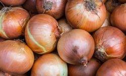 Cipolla: 18 benefici e proprietà per la salute